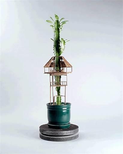 Tiny Plants Treehouses Potted Around Dornob Sprout