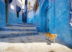 Move over Marrakesh - the secret Morocco where the cool ...