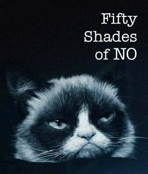 50 Shades Of Grey Meme - fifty shades lost and found pinterest fifty shades grumpy cat and animal humour