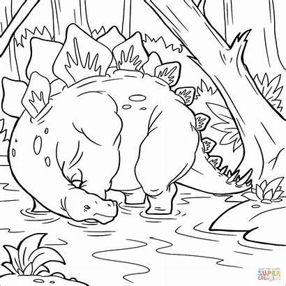 Stegosaurus Coloring Dinosaur Pages Jurassic Printable Dinosaurs