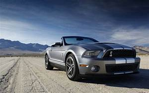 Ford Shelby Mustang GT 500 Wallpaper | HD Car Wallpapers | ID #2251