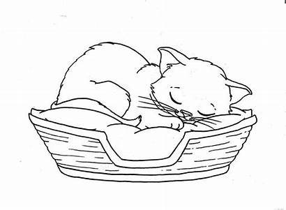 Sleeping Cat Coloring Pages Sleep Cats Printable