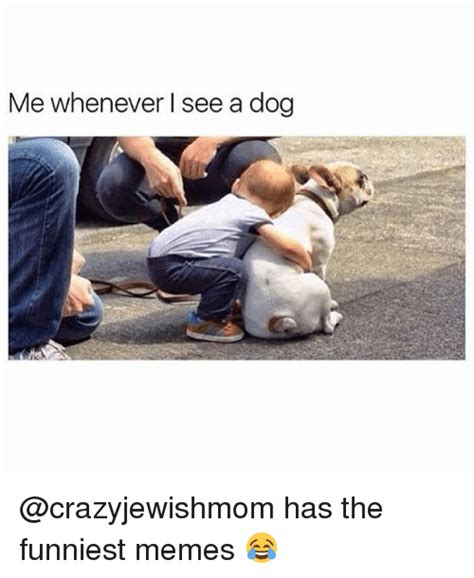 The Funniest Memes Ever - me whenever l see a dog has the funniest memes funny meme on conservative memes