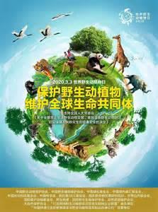 世界野生动植物日——我们一起听听大自然的声音_地球