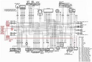 Bmw F650gs Electrical Wiring Diagram
