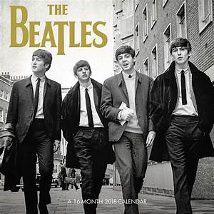 The Daily Beatle