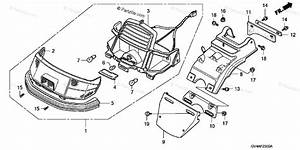 Honda Scooter 2003 Oem Parts Diagram For Rear Turn Signal