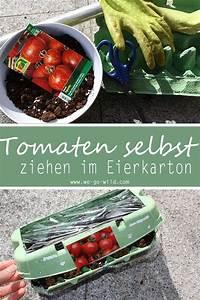 Tomaten Selber Anbauen : tomaten selber ziehen im eierkarton gew chshaus ~ Orissabook.com Haus und Dekorationen