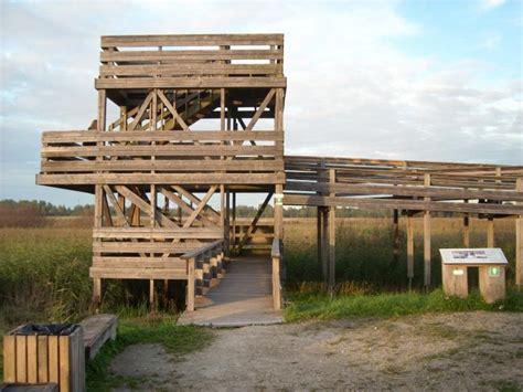 Skatu tornis - Rīga | putnu vērošana, novērošanas tornis
