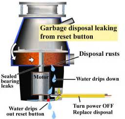 Garbage Disposal Leaking From Reset Button by Best Badger Garbage Disposal Photos 2017 Blue Maize