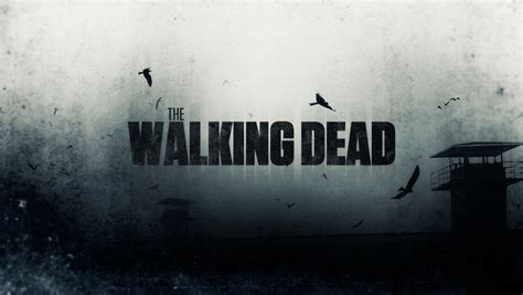 The Walking Dead Backgrounds The Walking Dead Wallpapers 4k Ultra Hd The Walking Dead Backgrounds 835rm