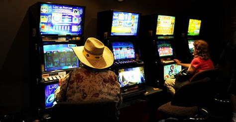 'my Wife And I Lost A Million On The Pokies'  The New Daily