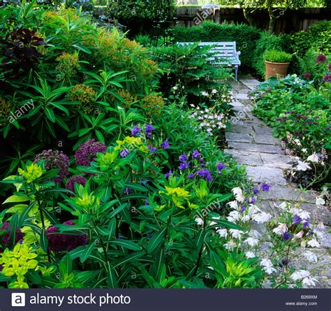 shady cottage garden shade june gardeners cottage west dean sussex shady garden euphorbia stock photo royalty free