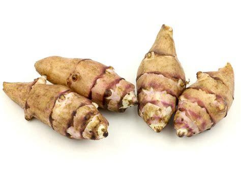 jerusalem artichoke jerusalem artichoke amazing multi beneficial herb