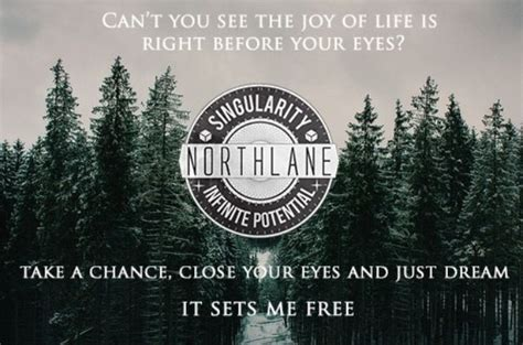 1000+ Images About Northlane Project On Pinterest