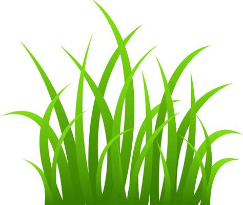 Grass Clipart Strands Of Green Grass Free Clip