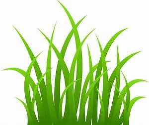Strands of Green Grass - Free Clip Art