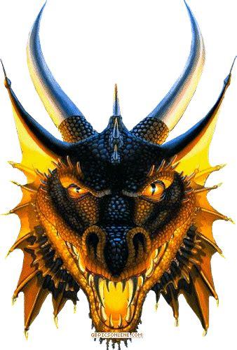 drachen bild  dagons pinterest drachen bilder drachen und fantasy bilder