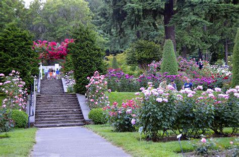 portland international test garden portland international rose test garden