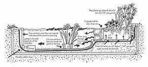 Bog Gravel Filtration