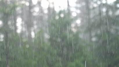 Heavy Rainfall Footage Rain Fall Nature Thumbnail