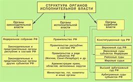 Исполнительные органы юридического лица