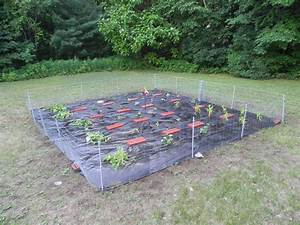Diy, Garden, Fencing, U2013, The, Adirondack, Chick