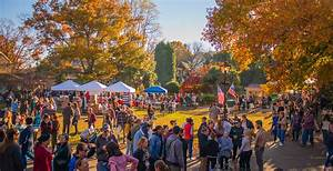 50  Things To Do In Philly This Weekend  November 1