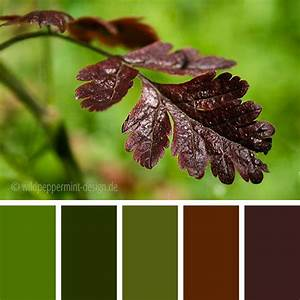 Wandfarbe Grün Palette : farbpalette herbst herbtliche farbpalette farbinspiration gedeckte herbstfarben gr n ~ Watch28wear.com Haus und Dekorationen