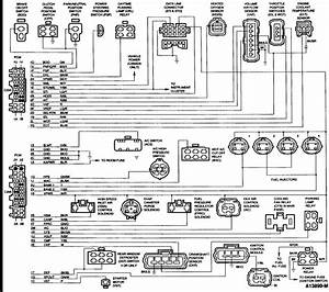 1989 Ford Festiva Coil And Distributor Wiring Diagram