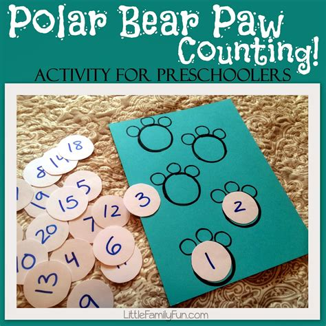 polar paw counting 489 | 144 001