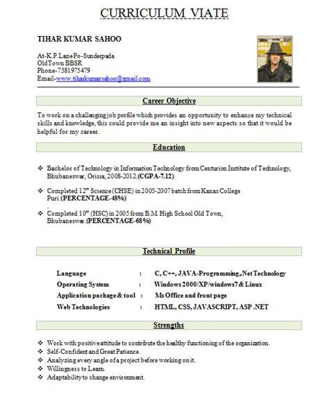 fresher resume  format   ms word cv sample