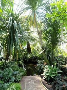 Le jardin des serres d39auteuil un coin de paradis for Photo jardin avec palmier 6 le jardin des serres dauteuil un coin de paradis