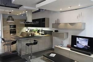 Cuisine Équipée Noir : darty et sa nouvelle collection de cuisines ~ Melissatoandfro.com Idées de Décoration