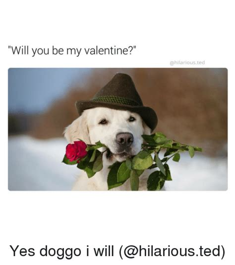 Will You Be My Valentine Meme - 25 best memes about will you be my valentines will you be my valentines memes