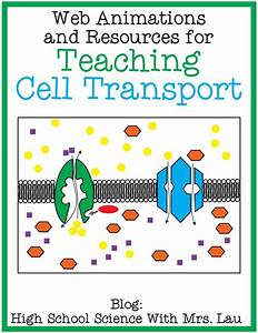 Cell membrane transport diagram www pixshark com images galleries facilitated diffusion animation www pixshark ccuart Image collections