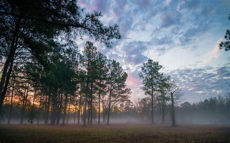 Landscape Mist Wallpapers Hd Desktop And Mobile Backgrounds