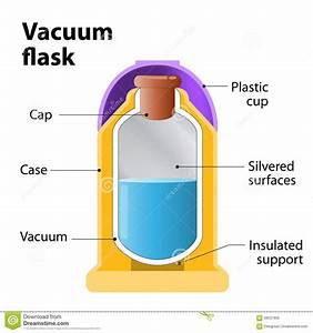 Vacuum Flask Or Dewar Flask Stock Vector