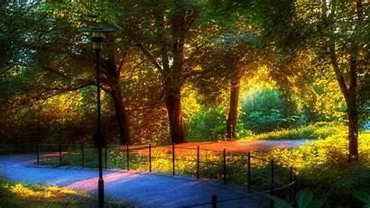 Wallpapers Desktop Windows Widescreen Fresh Park Place