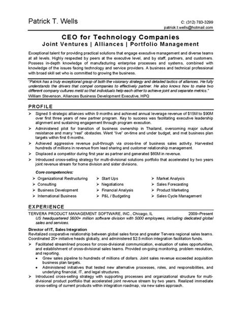 ceo technology resume exle