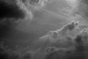 Jugendbett Mit Himmel : dunkler himmel mit v geln foto bild nature wolken himmel bilder auf fotocommunity ~ Whattoseeinmadrid.com Haus und Dekorationen