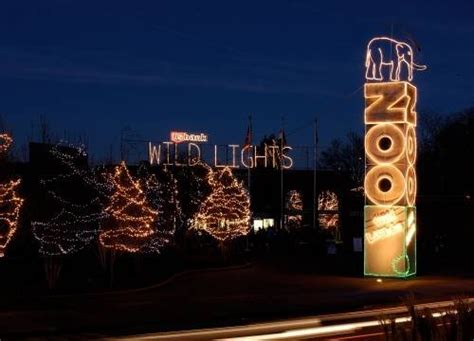 saint louis zoo christmas lights the top holiday light displays in st louis st louis