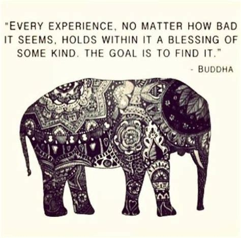 buddha quotes quote inspirational buddhism elephant karma buddhist kind inspiring famous inspiration beauty animal blessing spirit experience every positive quotesgram