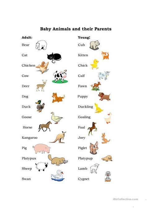 Baby Animals worksheet Free ESL printable worksheets