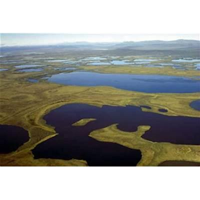 Explore vuntut national park todays homepage vuntut national park the canadian encyclopedia sciox Choice Image