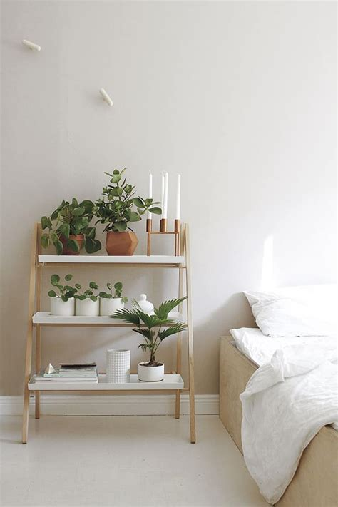 Bedroom Inspiration Plants by How To Decorate Your Interior With Green Indoor Plants And