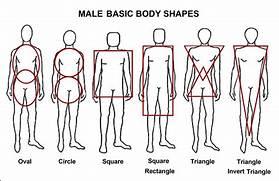 Female Body Type Chart | freesongs4u