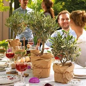Mediterrane Tischdeko Ideen : die besten 25 mediterrane hochzeit ideen auf pinterest mediterrane tischl ufer griechische ~ Sanjose-hotels-ca.com Haus und Dekorationen