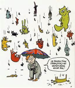 raining cats and dogs rubbishes about raining cats and dogs after peppers