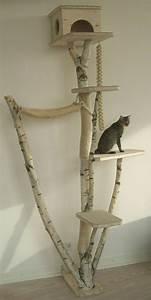 L'arbre à chat un terrain d'aventures et de repos pour votre ami Archzine fr